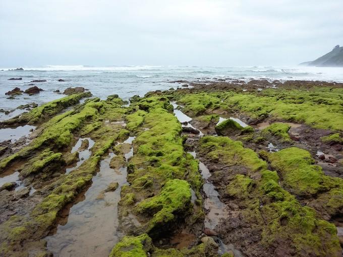 Playa Arenal de Moris (2)