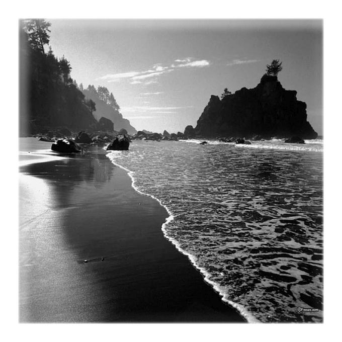 shore life